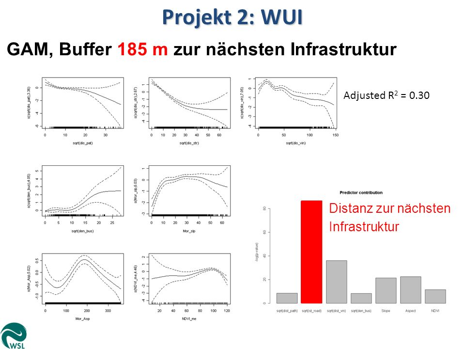 Projekt 2: WUI GAM, Buffer 185 m zur nächsten Infrastruktur