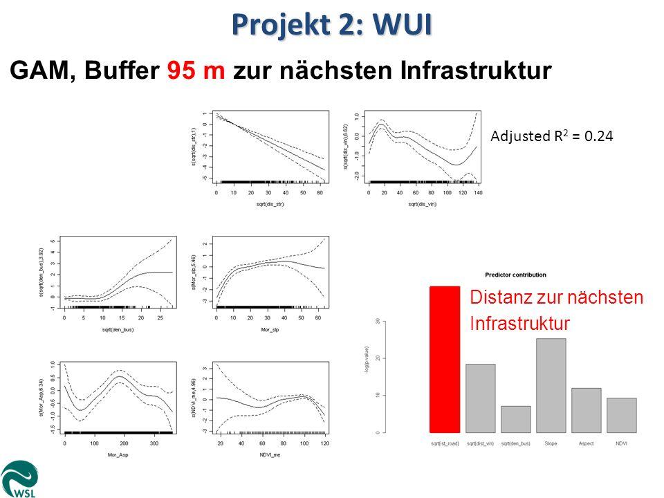 Projekt 2: WUI GAM, Buffer 95 m zur nächsten Infrastruktur