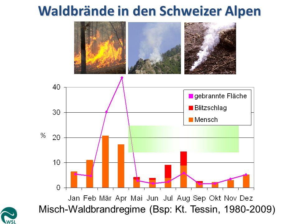 Waldbrände in den Schweizer Alpen