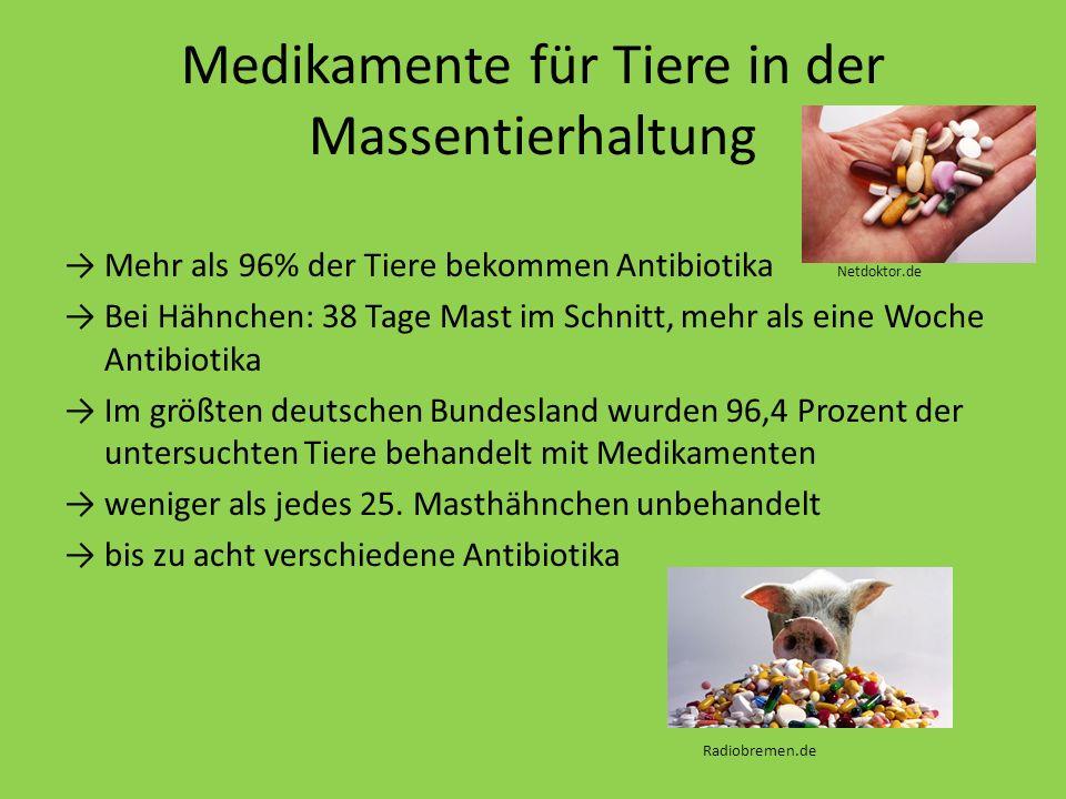 Medikamente für Tiere in der Massentierhaltung