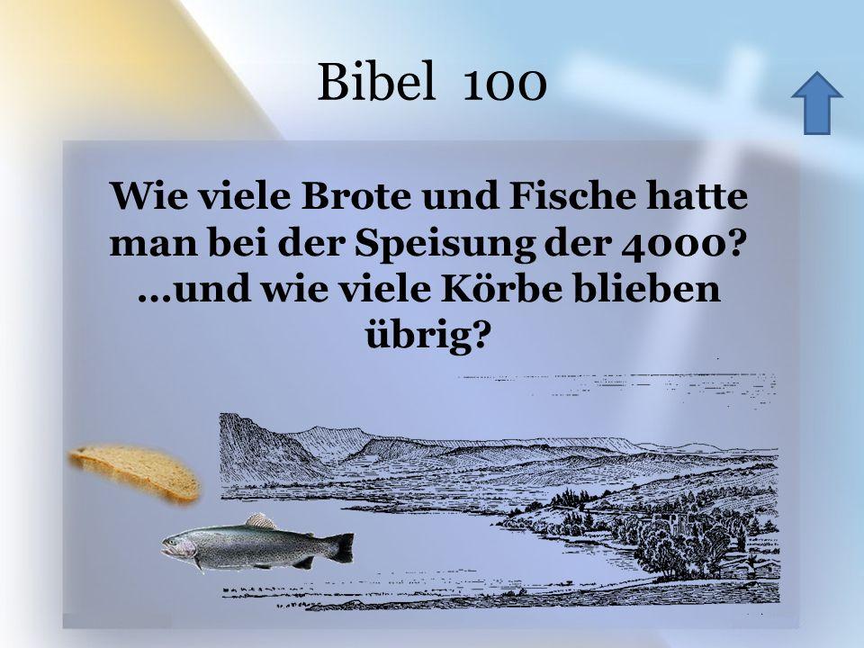 Bibel 100 Wie viele Brote und Fische hatte man bei der Speisung der 4000.
