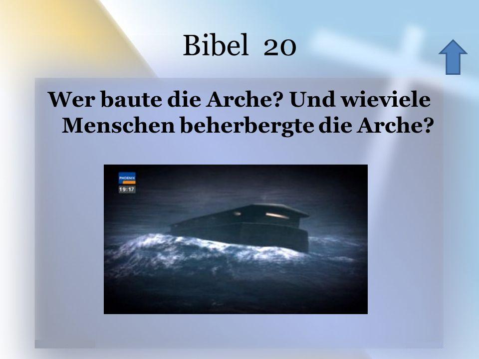 Wer baute die Arche Und wieviele Menschen beherbergte die Arche