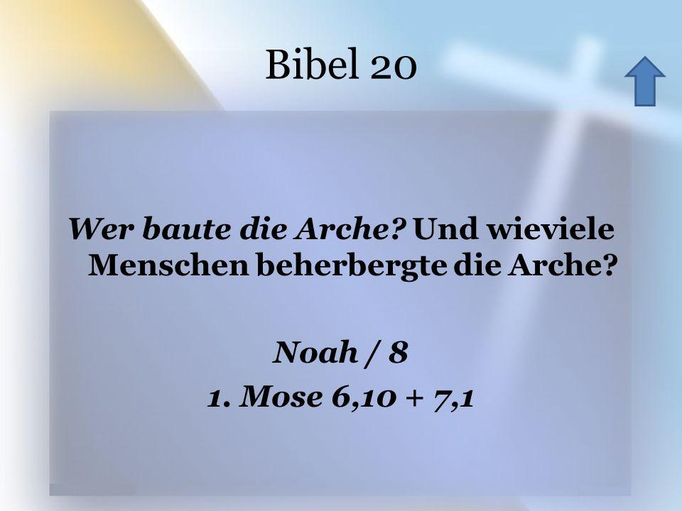 Bibel 20 Wer baute die Arche. Und wieviele Menschen beherbergte die Arche.