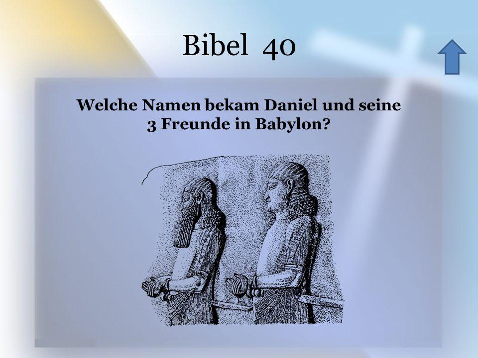 Welche Namen bekam Daniel und seine 3 Freunde in Babylon