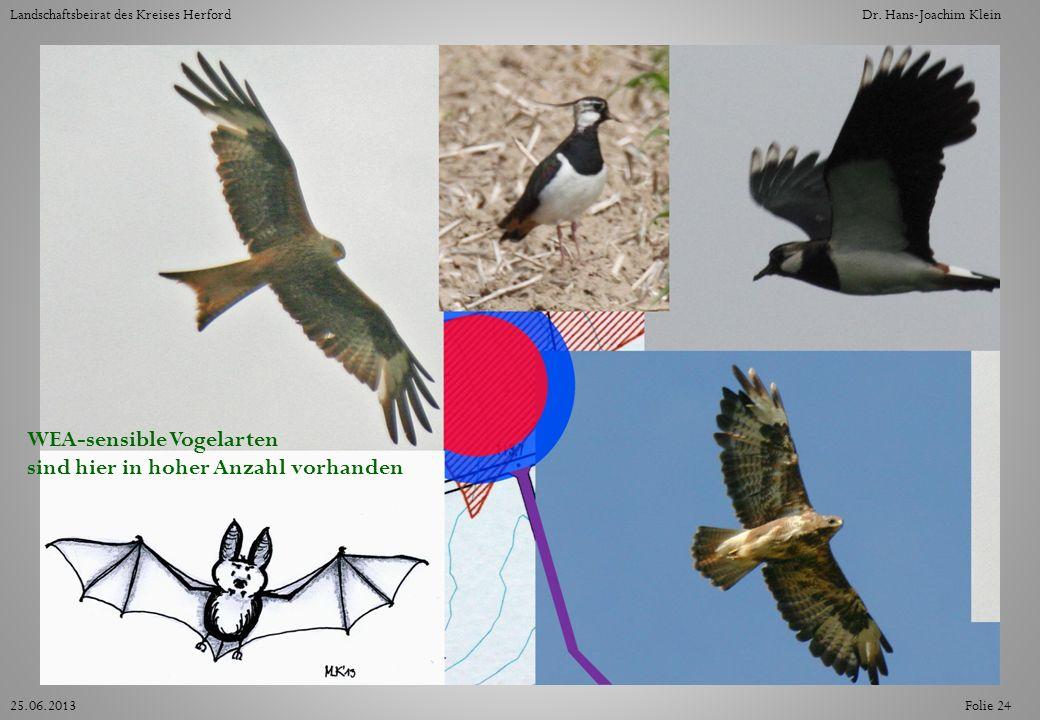 WEA-sensible Vogelarten sind hier in hoher Anzahl vorhanden