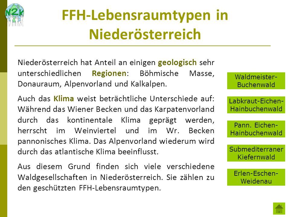 FFH-Lebensraumtypen in Niederösterreich