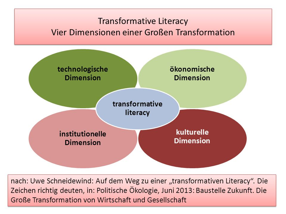 Transformative Literacy Vier Dimensionen einer Großen Transformation