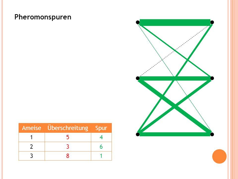Pheromonspuren Ameise Überschreitung Spur 1 5 4 2 3 6 3 8 1