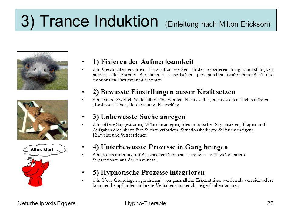3) Trance Induktion (Einleitung nach Milton Erickson)