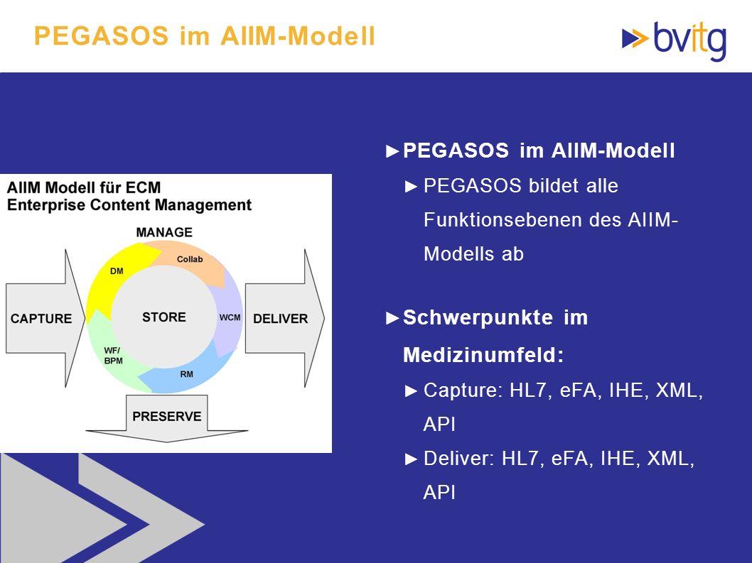 PEGASOS im AIIM-Modell