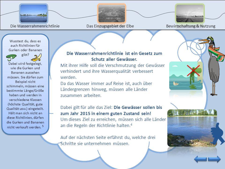 Die Wasserrahmenrichtlinie ist ein Gesetz zum Schutz aller Gewässer.