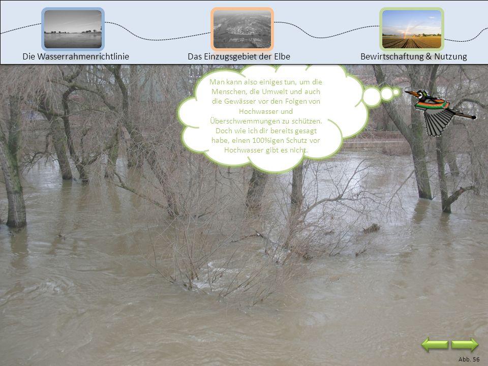Die Wasserrahmenrichtlinie Das Einzugsgebiet der Elbe