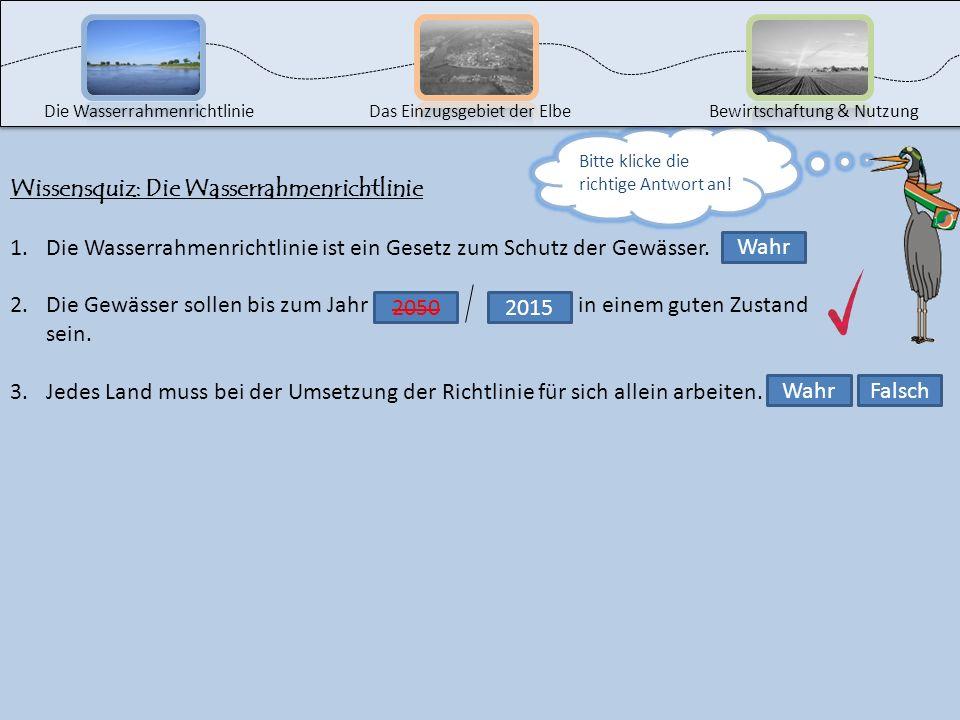 Wissensquiz: Die Wasserrahmenrichtlinie