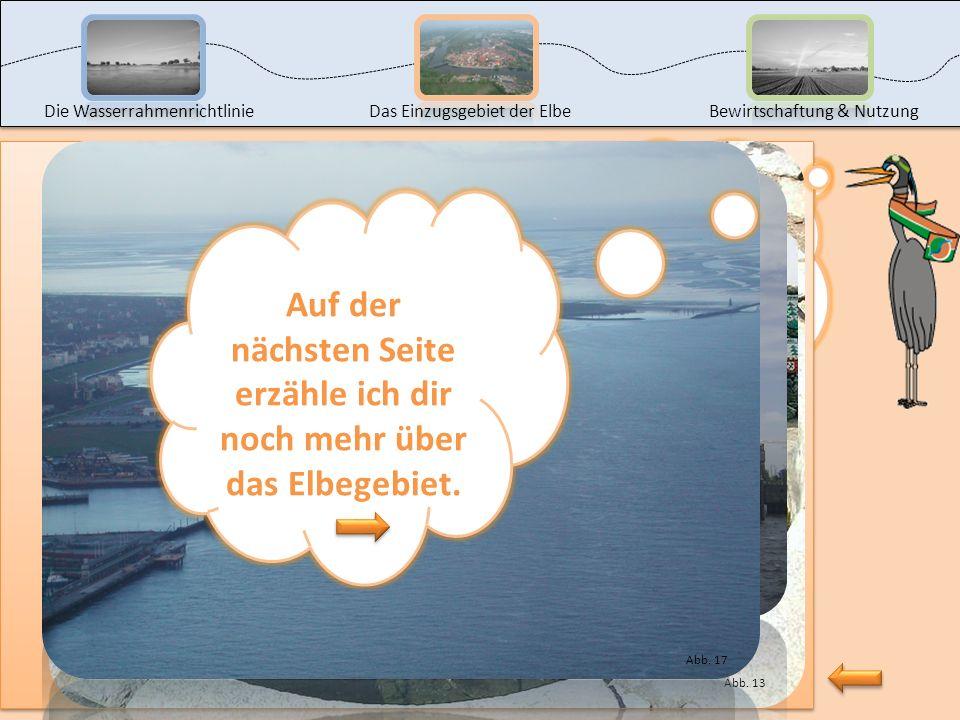 Auf der nächsten Seite erzähle ich dir noch mehr über das Elbegebiet.