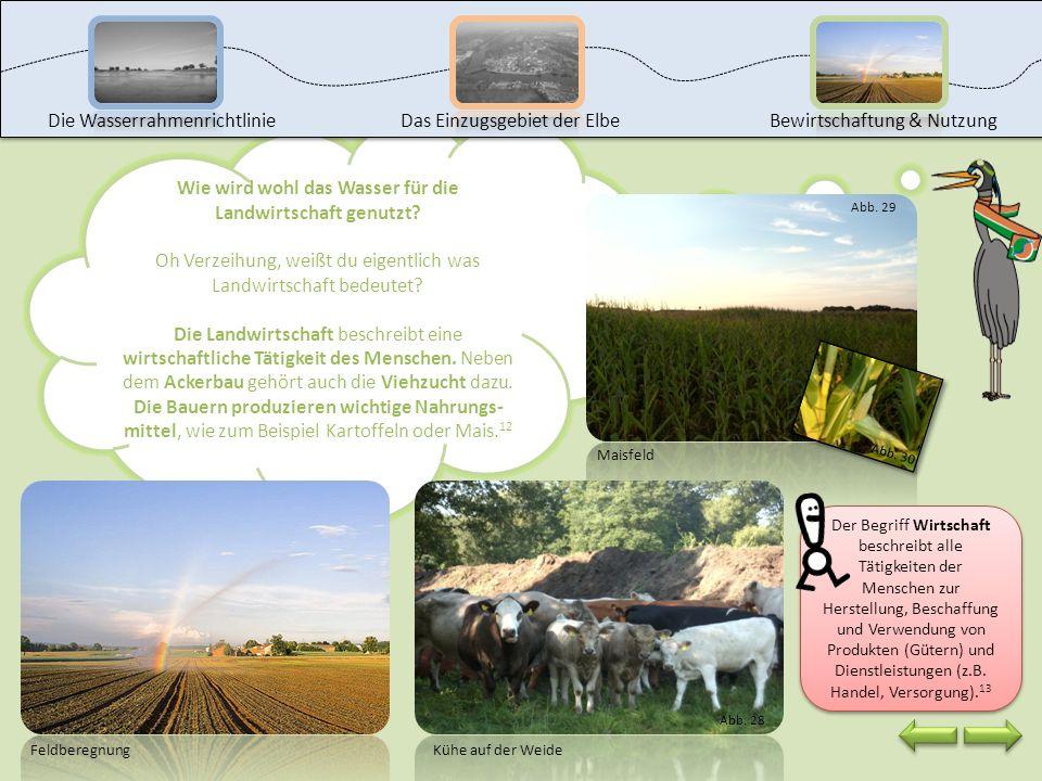 Wie wird wohl das Wasser für die Landwirtschaft genutzt