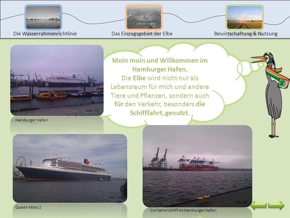Moin moin und Willkommen im Hamburger Hafen.