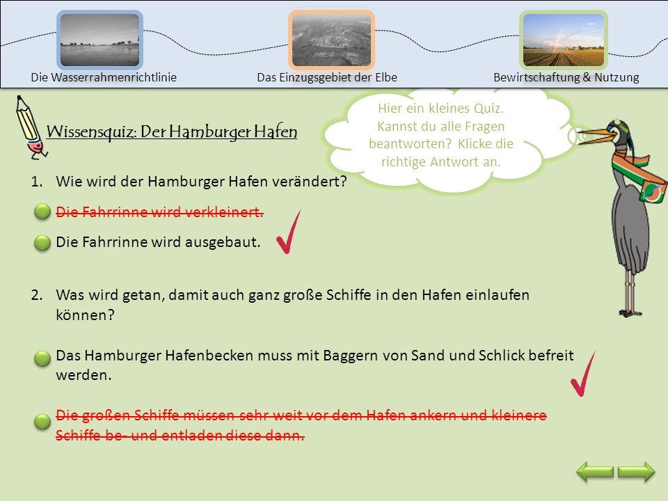 Wissensquiz: Der Hamburger Hafen