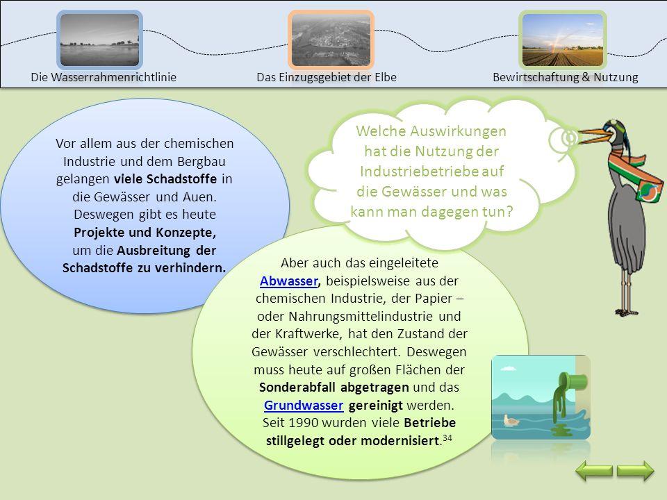 Die Wasserrahmenrichtlinie