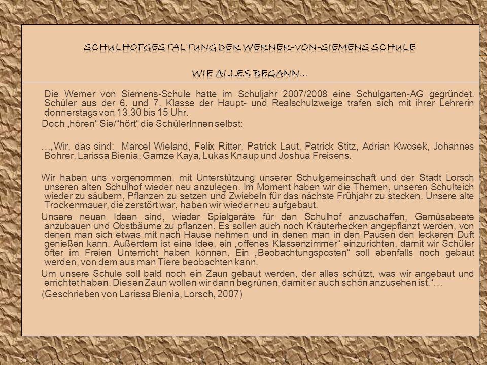 Schulhofgestaltung der Werner-von-Siemens Schule Wie alles begann…