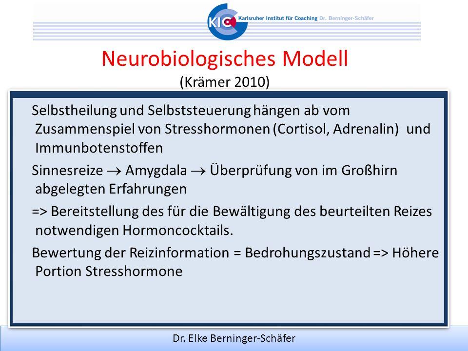 Neurobiologisches Modell (Krämer 2010)