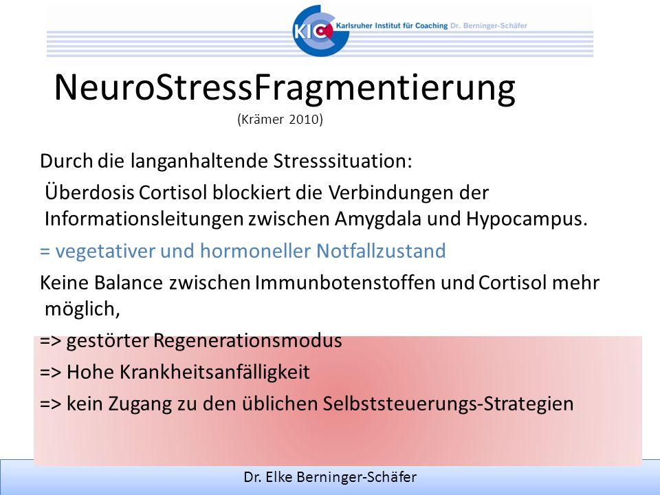 NeuroStressFragmentierung (Krämer 2010)