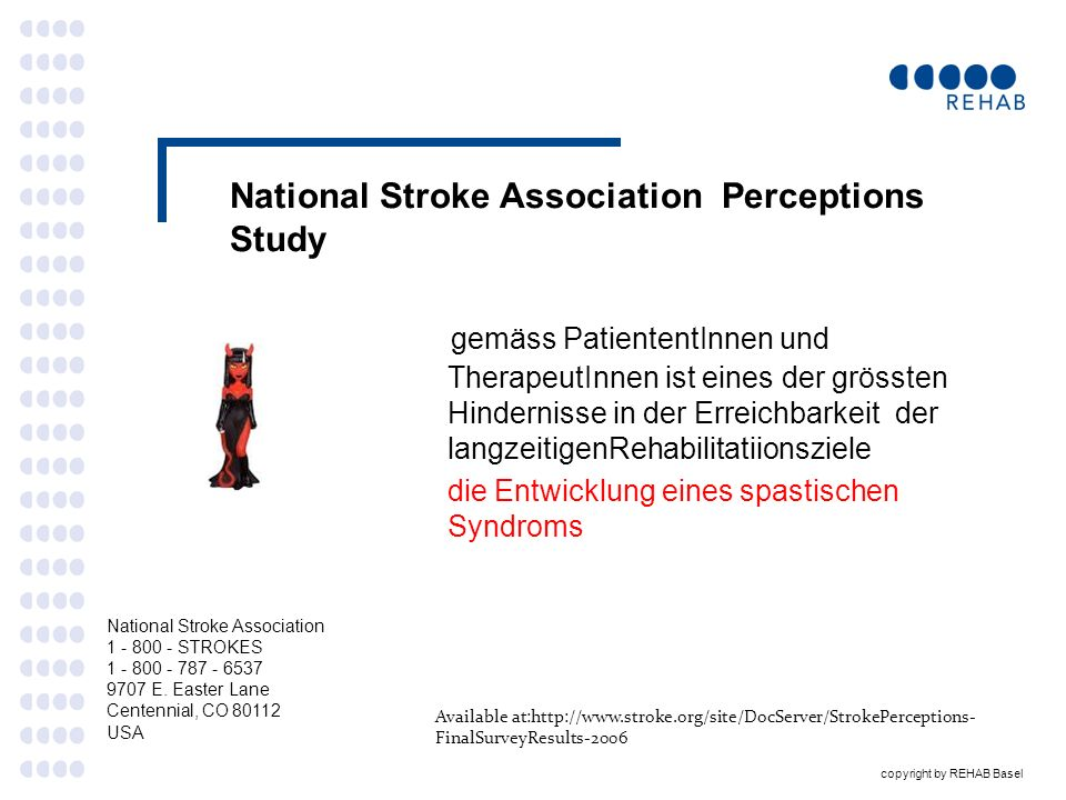 National Stroke Association Perceptions Study