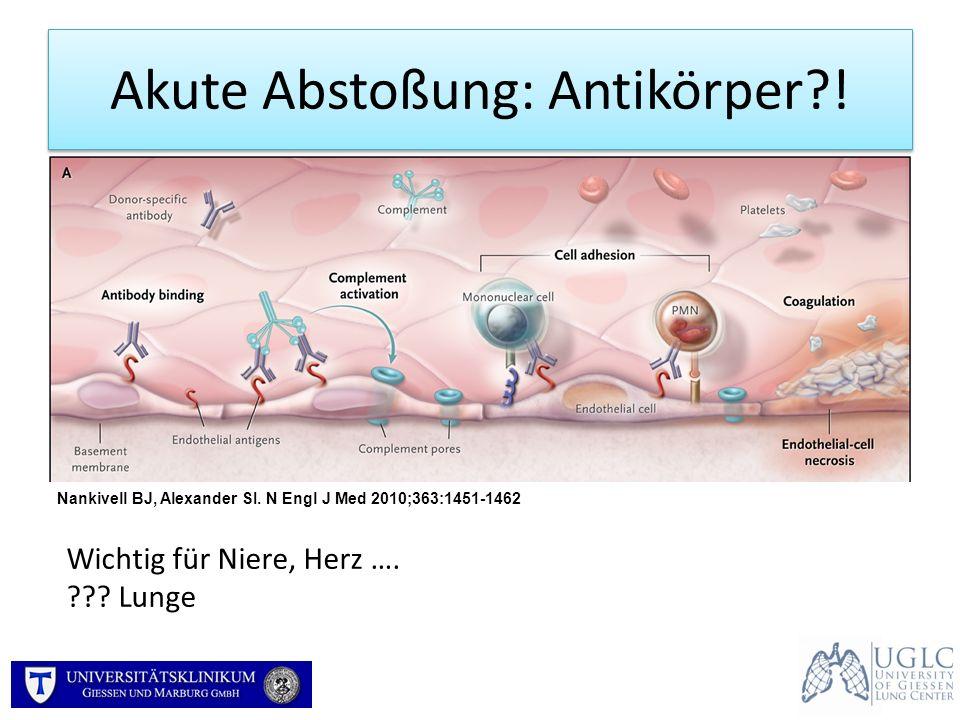 Akute Abstoßung: Antikörper !