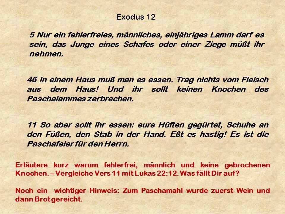 Exodus 12 5 Nur ein fehlerfreies, männliches, einjähriges Lamm darf es sein, das Junge eines Schafes oder einer Ziege müßt ihr nehmen.