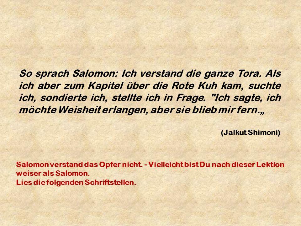 So sprach Salomon: Ich verstand die ganze Tora