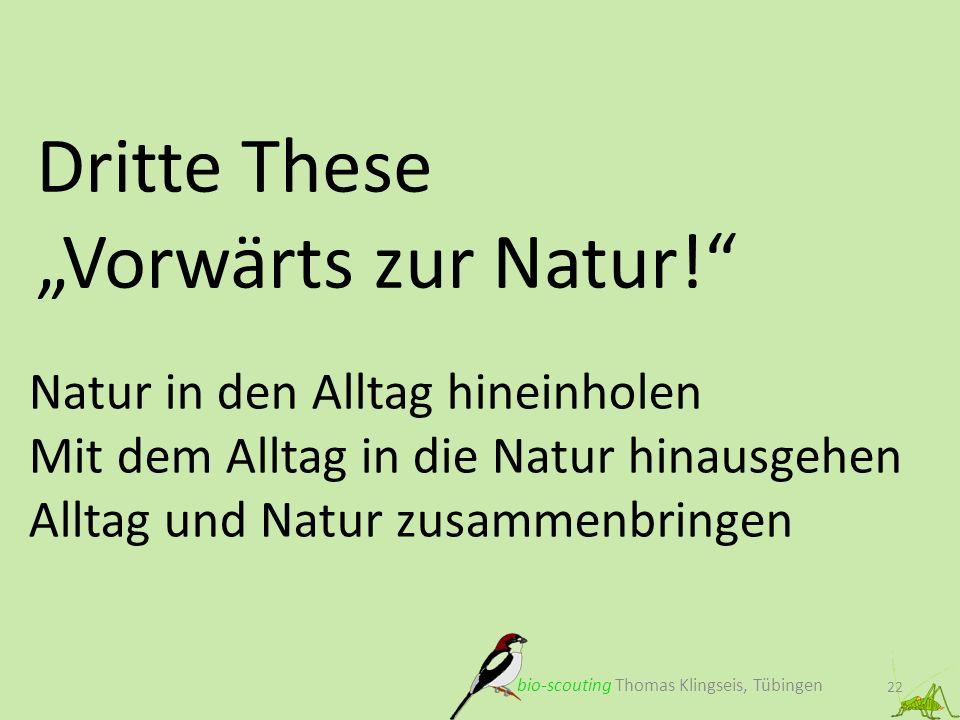 """Dritte These """"Vorwärts zur Natur!"""