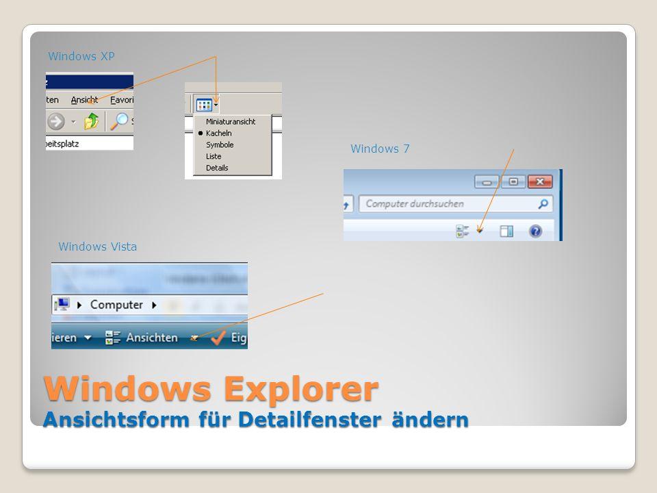 Windows Explorer Ansichtsform für Detailfenster ändern