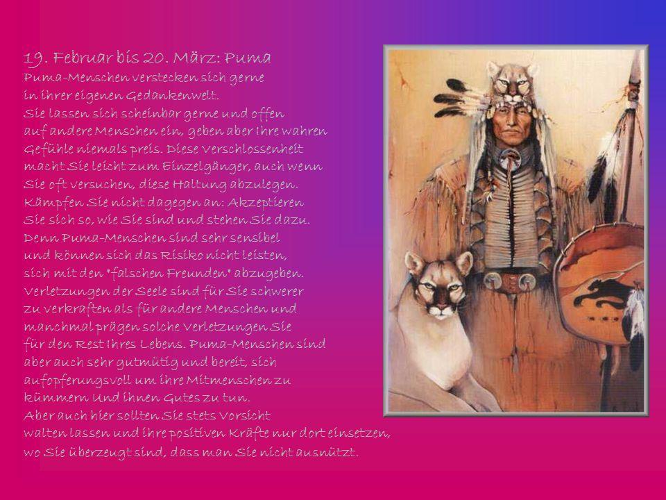 19. Februar bis 20. März: Puma Puma-Menschen verstecken sich gerne
