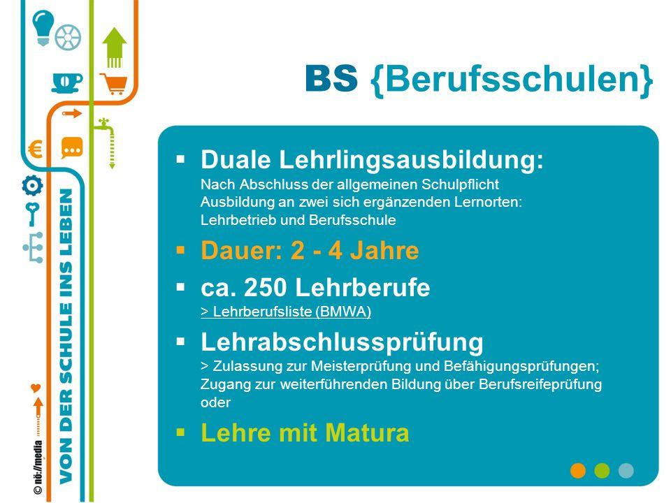 BS {Berufsschulen}