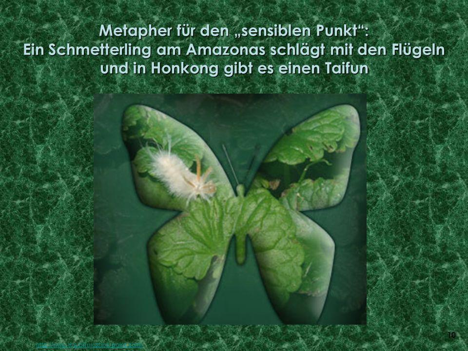 """Metapher für den """"sensiblen Punkt : Ein Schmetterling am Amazonas schlägt mit den Flügeln und in Honkong gibt es einen Taifun"""