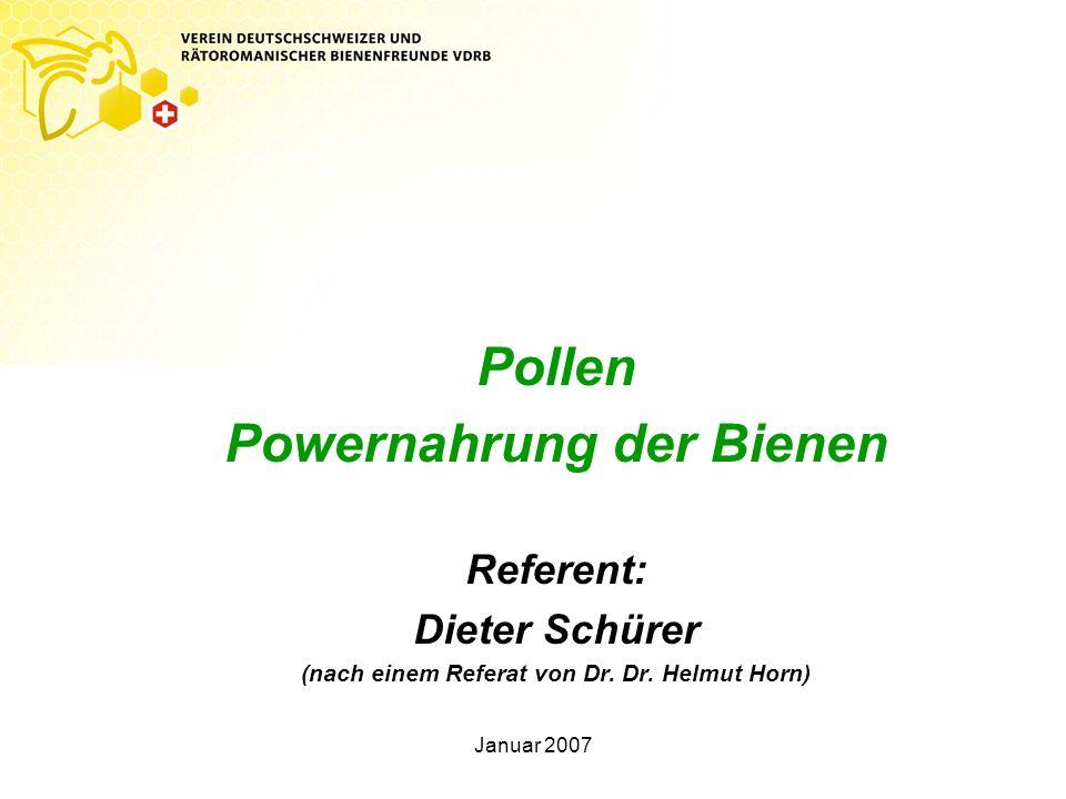 Powernahrung der Bienen (nach einem Referat von Dr. Dr. Helmut Horn)