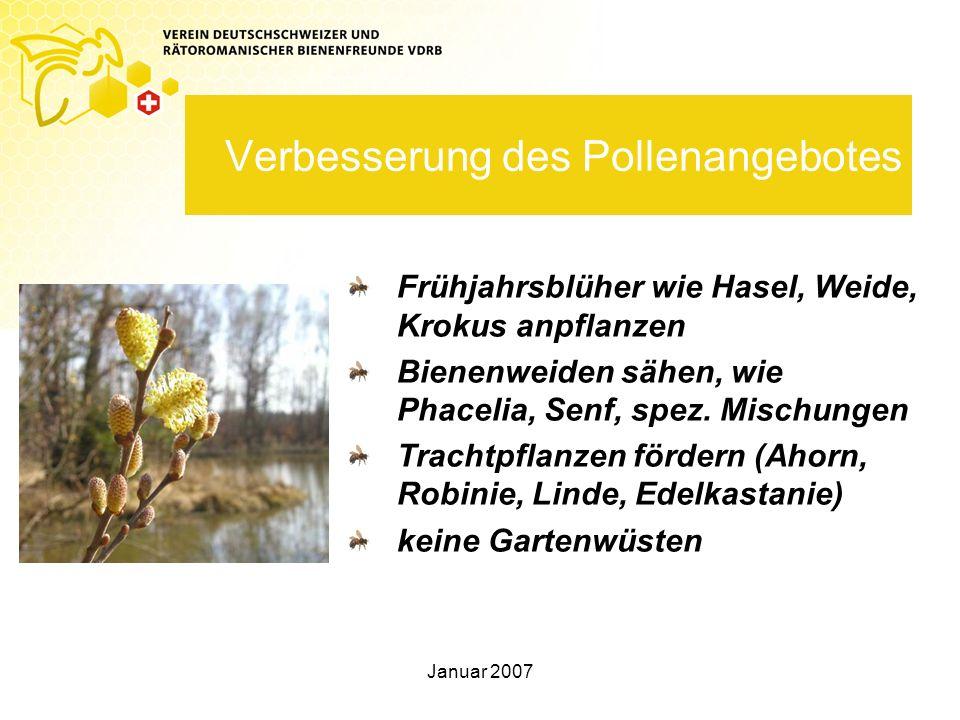 Verbesserung des Pollenangebotes