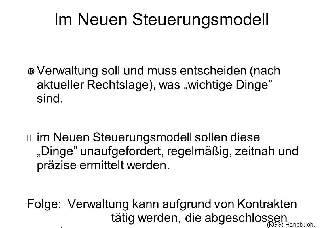 Im Neuen Steuerungsmodell