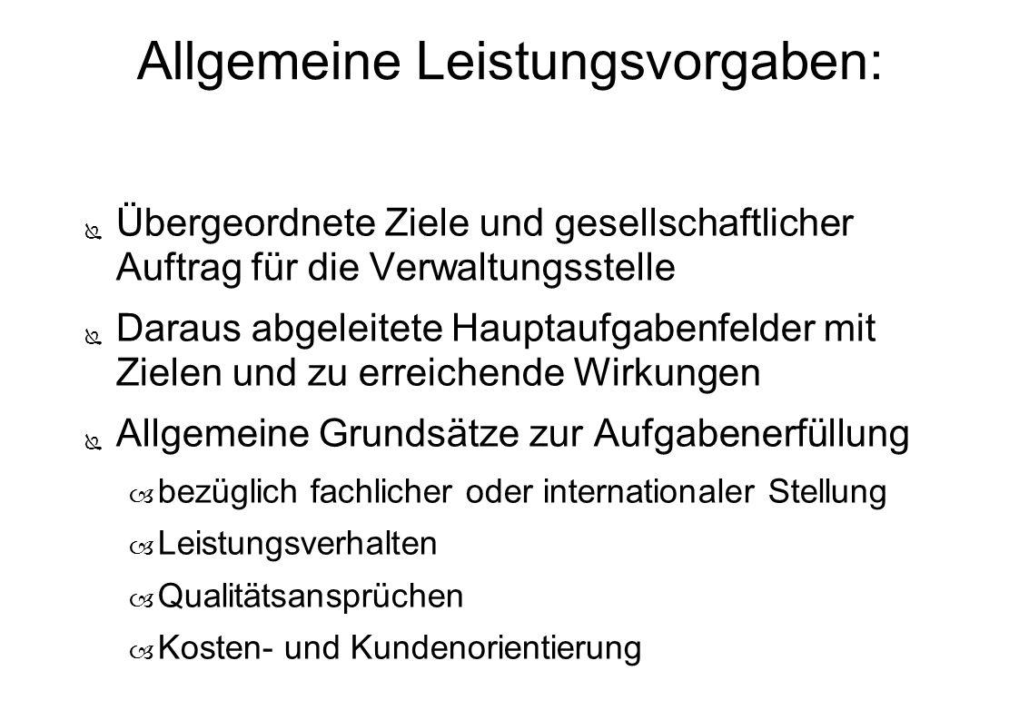 Allgemeine Leistungsvorgaben: