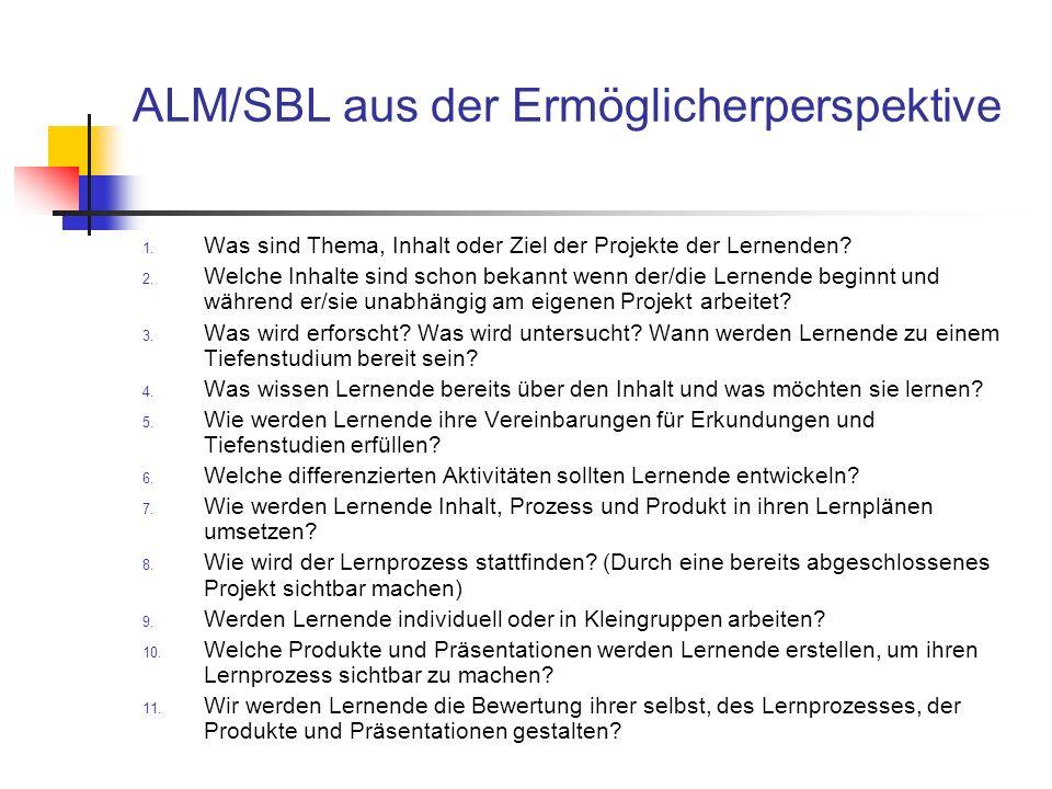 ALM/SBL aus der Ermöglicherperspektive