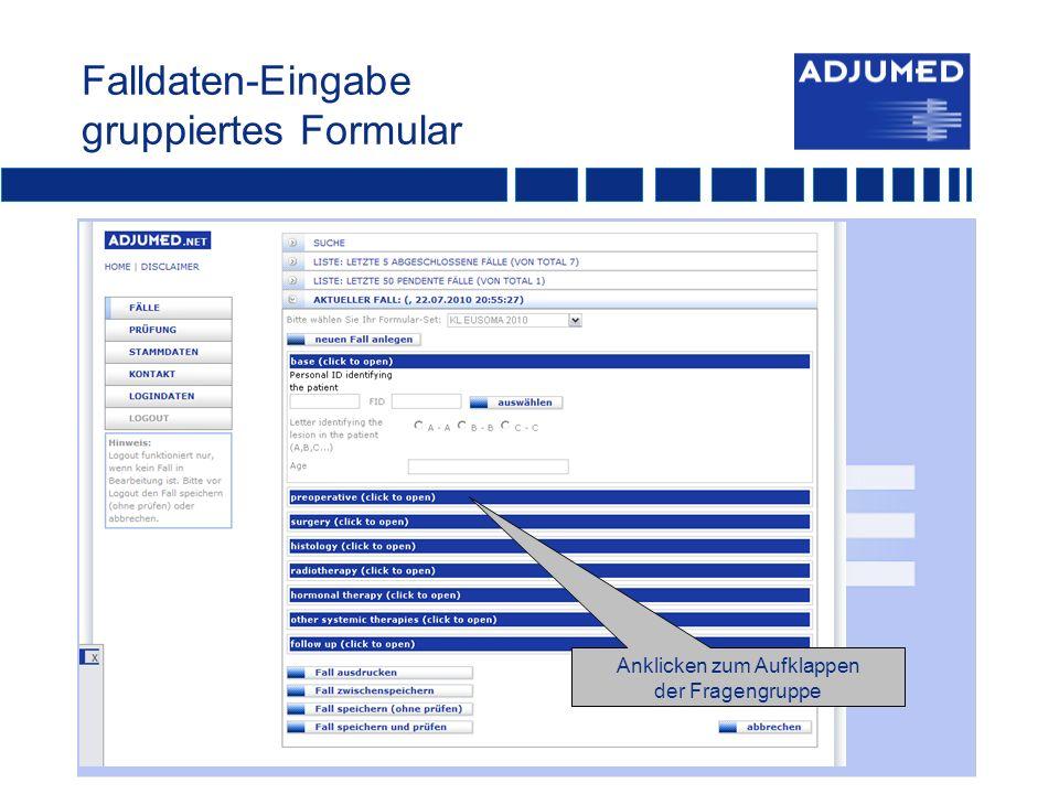 Falldaten-Eingabe gruppiertes Formular