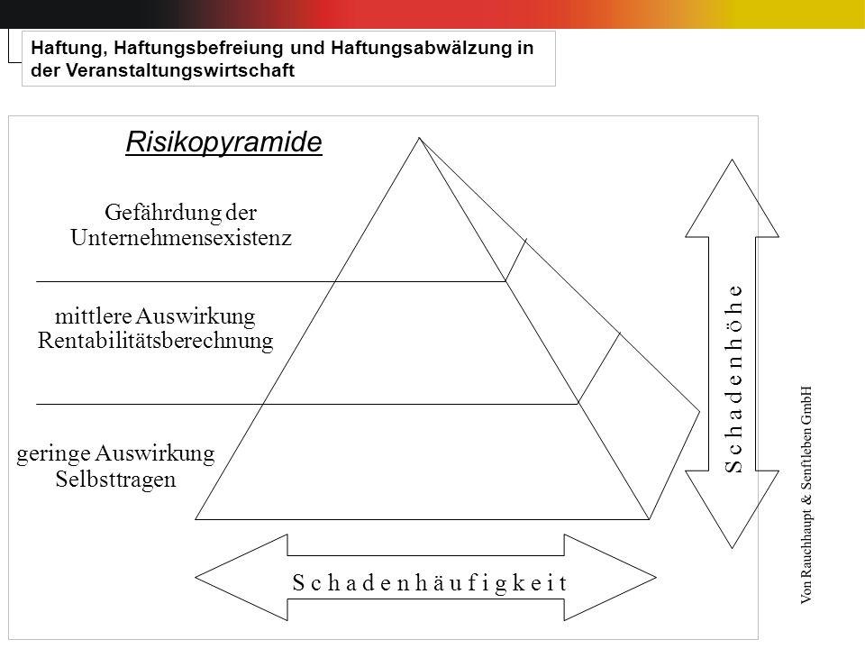 Risikopyramide Gefährdung der Unternehmensexistenz mittlere Auswirkung