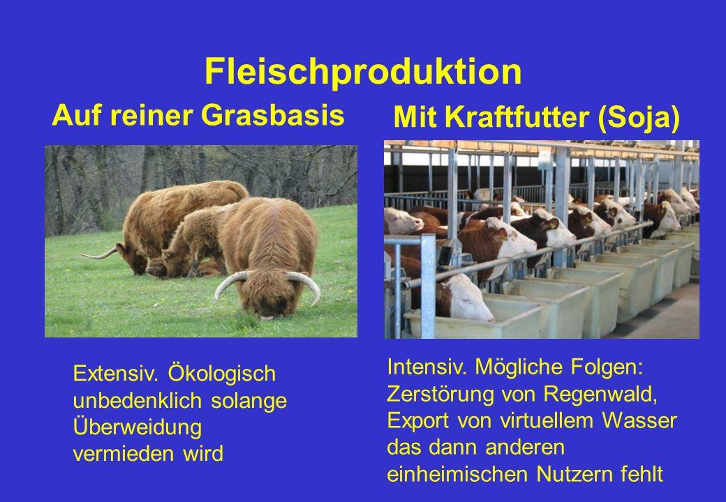 Fleischproduktion Auf reiner Grasbasis Mit Kraftfutter (Soja)