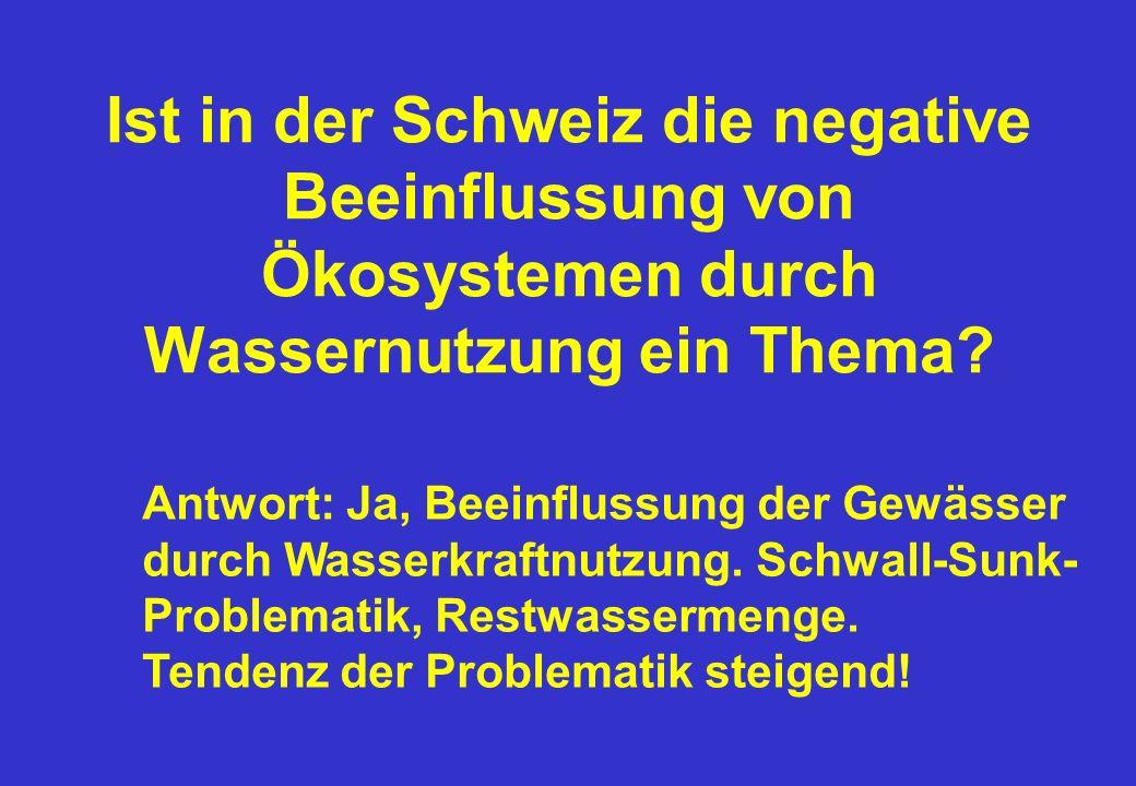 Ist in der Schweiz die negative Beeinflussung von Ökosystemen durch Wassernutzung ein Thema