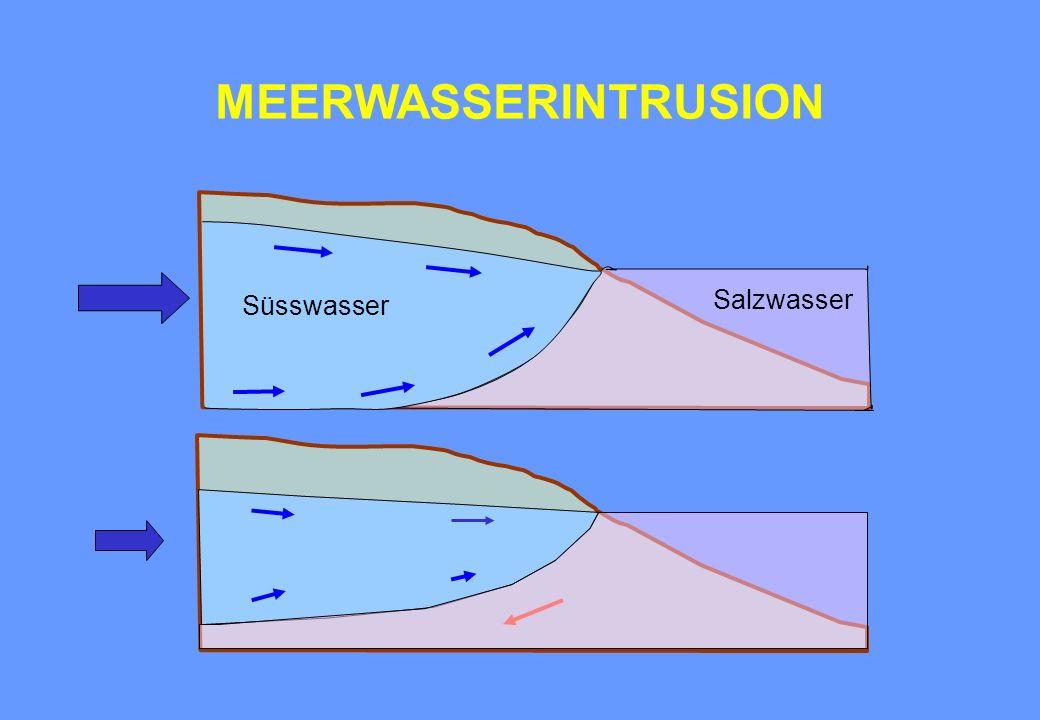 MEERWASSERINTRUSION Süsswasser Salzwasser
