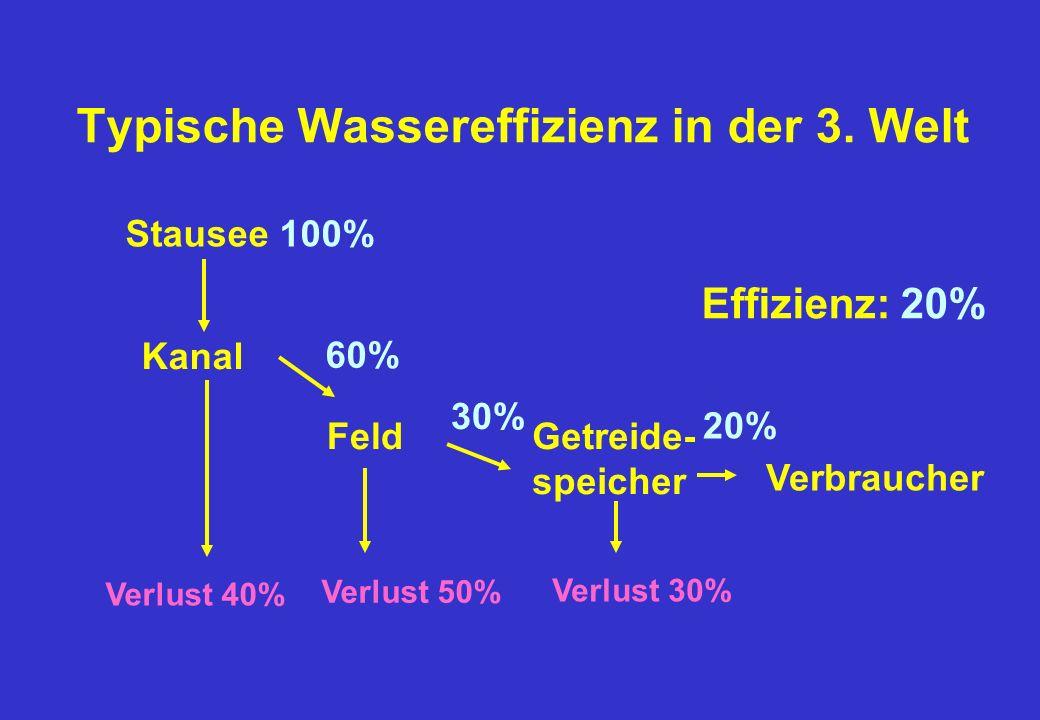 Typische Wassereffizienz in der 3. Welt