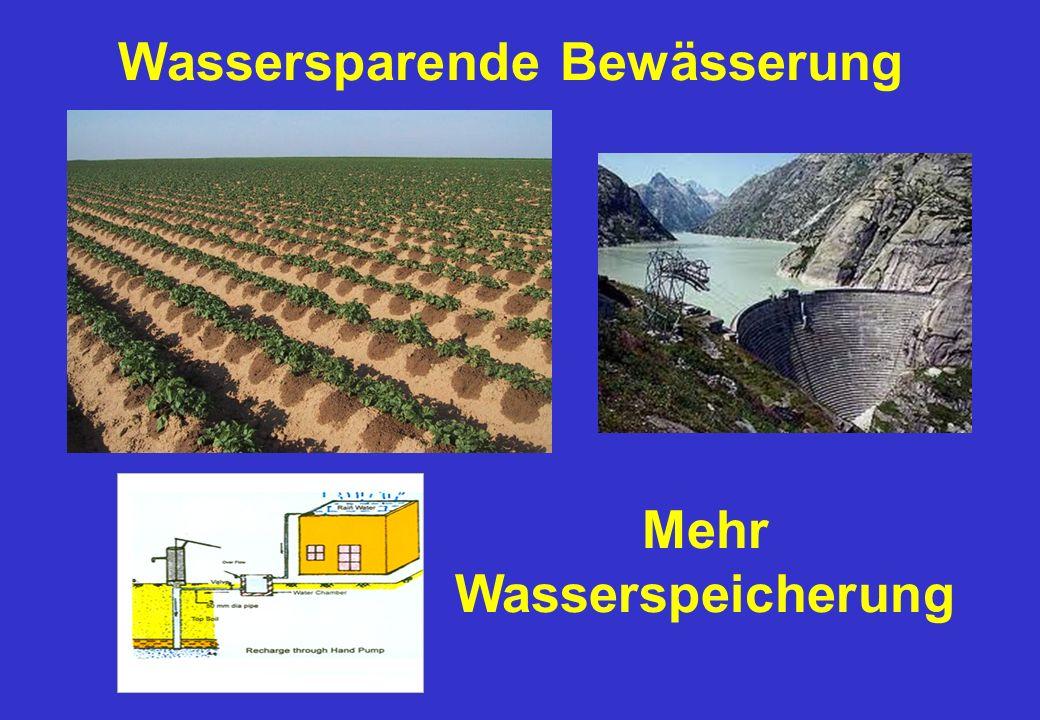 Wassersparende Bewässerung