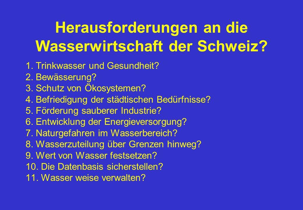 Herausforderungen an die Wasserwirtschaft der Schweiz