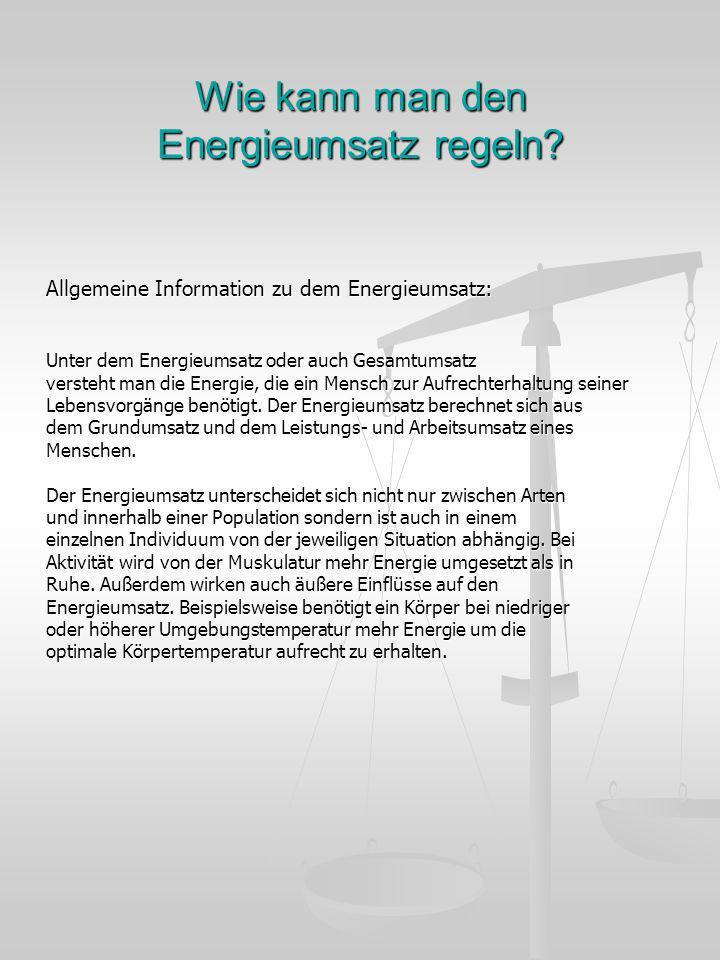 Wie kann man den Energieumsatz regeln