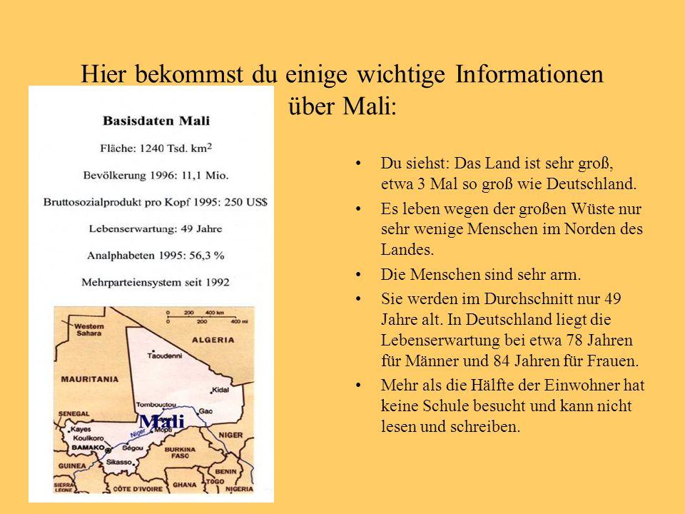 Hier bekommst du einige wichtige Informationen über Mali: