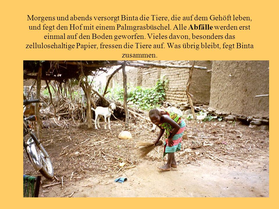 Morgens und abends versorgt Binta die Tiere, die auf dem Gehöft leben, und fegt den Hof mit einem Palmgrasbüschel.